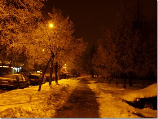 Žiemos vaizdai